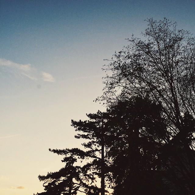 Les couchers de soleil d'automne #1