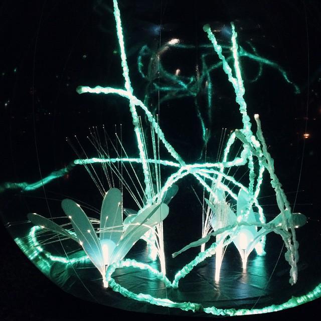Fête des Lumières 2014 – Jardin d'hiver au Parc de la Tête d'Or