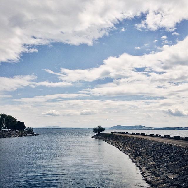Le bord du lac, encore