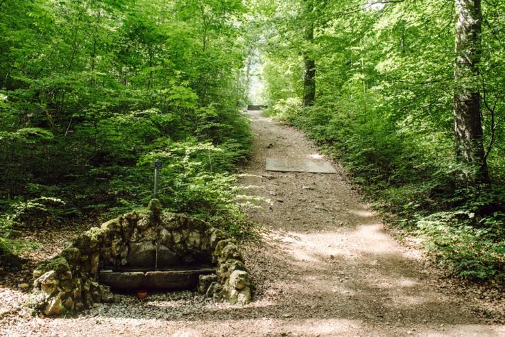 Neuchâtel – Chemin de la Combacervey
