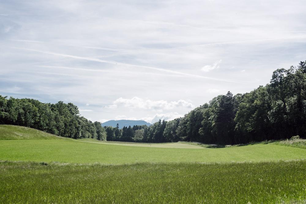 Vue sur la campagne neuchâteloise et la montagne de Boudry