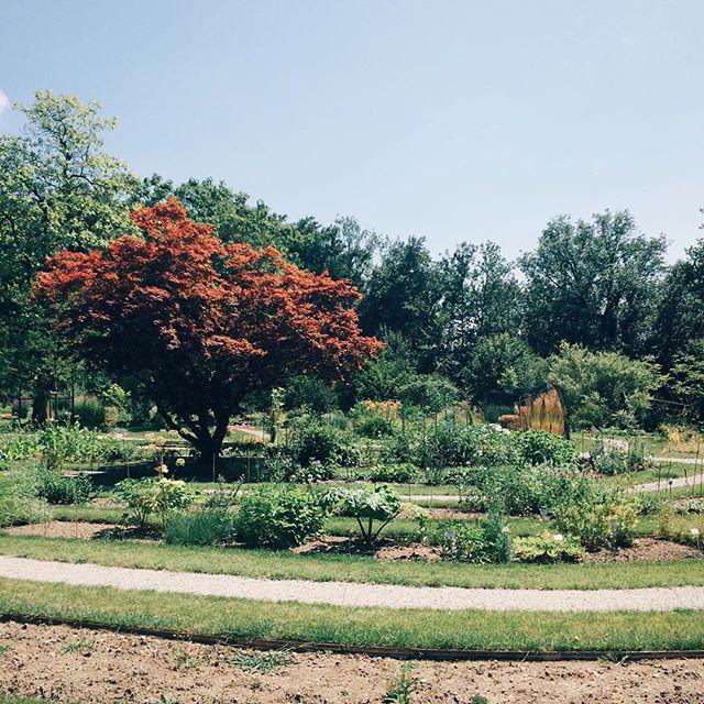 Jardin botanique de Fribourg