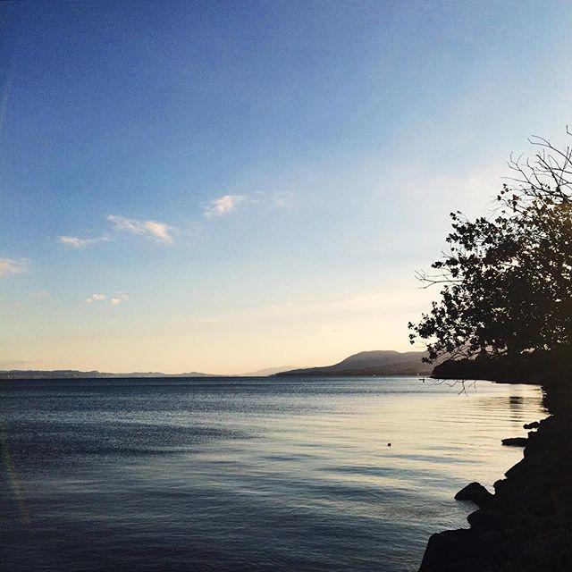 Le bord du lac, encore. Et le soleil qui se couche.