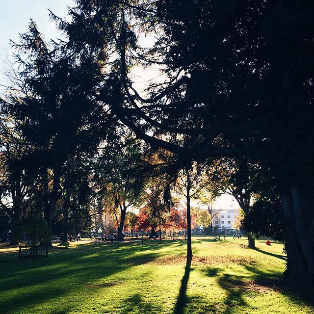 Balade au parc municipal de Bienne