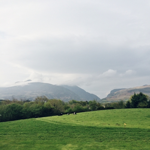 Road trip en Irlande – La campagne irlandaise