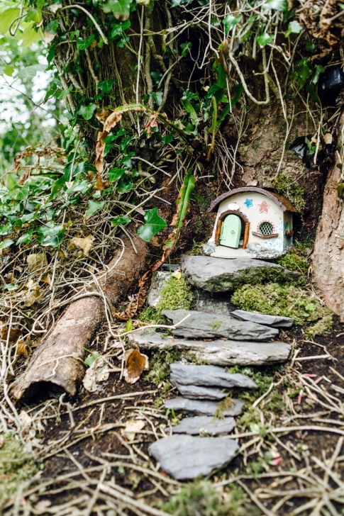 Derrynane Fairy Trail – Ring of Kerry