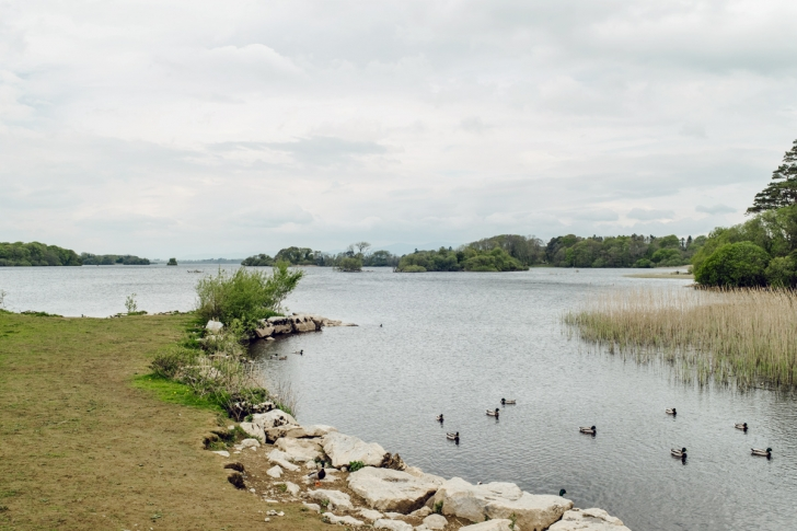 Lough Leane – Killarney National Park