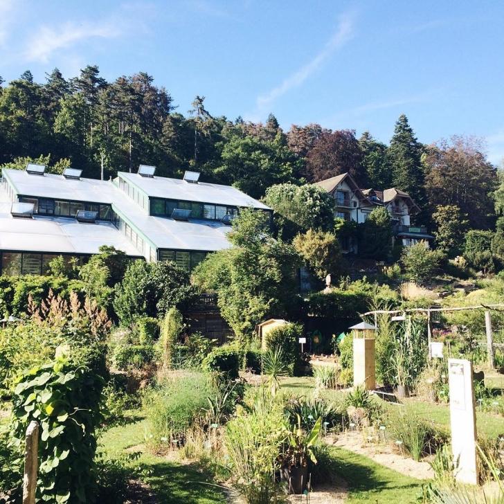 Le jardin botanique de Neuchâtel