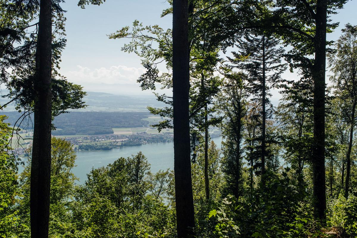 La vue sur le lac de Bienne