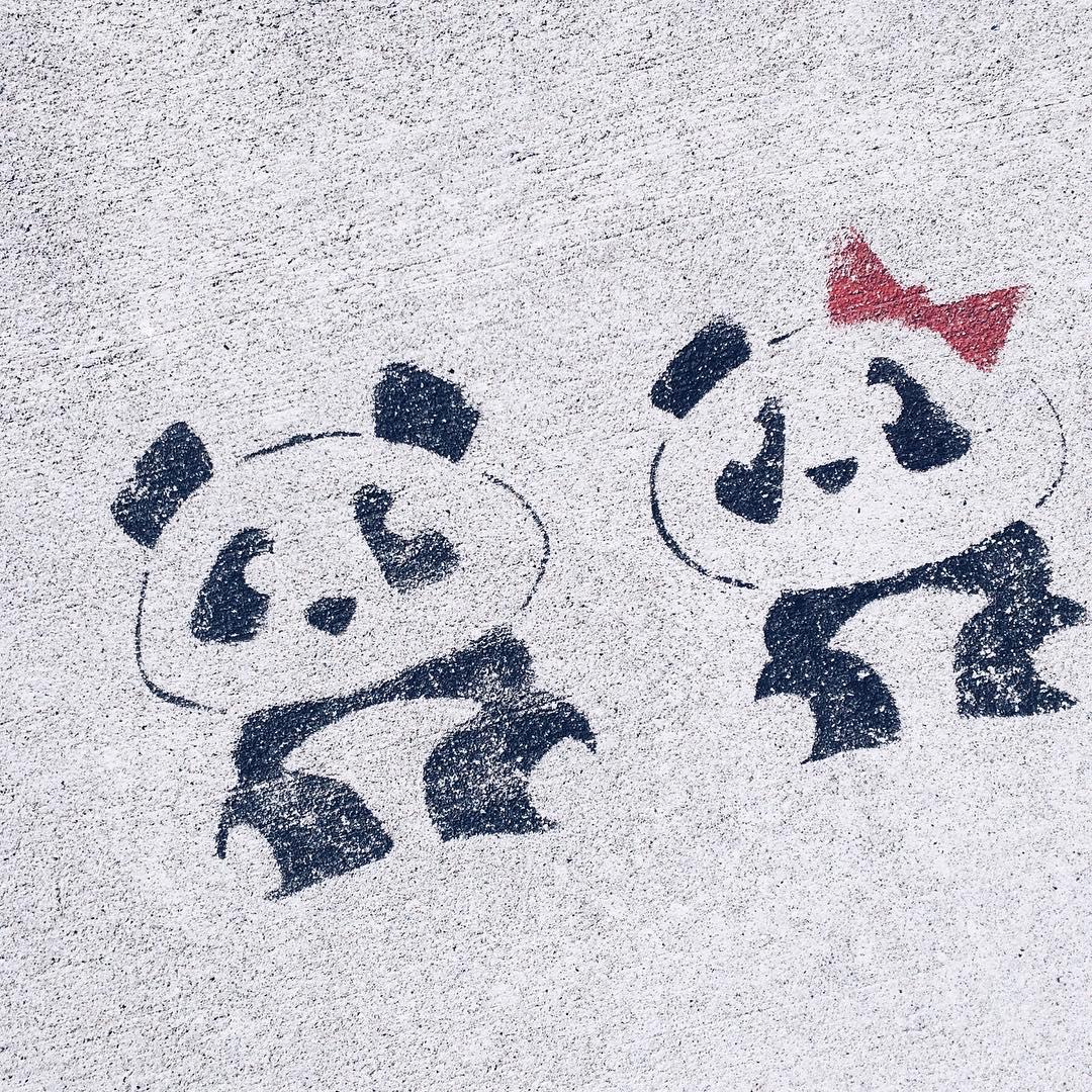 Les petits pandas du bord du lac