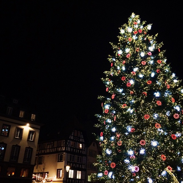 Le plus grand sapin de Noël d'Europe sur la place Kléber à Strasbourg