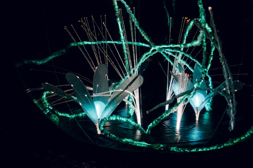 Fête des Lumières 2014 – Jardin d'hiver