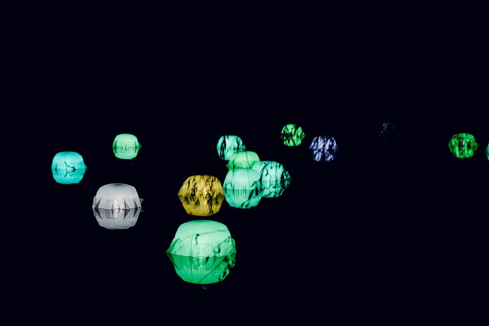 Fête des Lumières 2014 –Jardin d'hiver