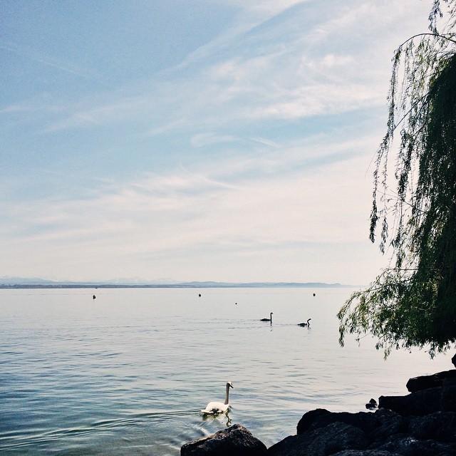 … et celle du vendredi après-midi au bord du lac de Neuchâtel