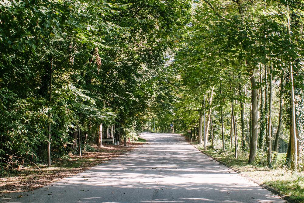 Chemin du Palatinat