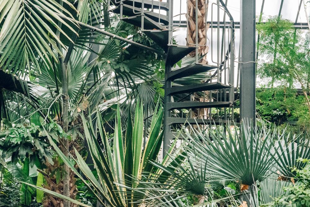 Lyon – Serres du Parc de la Tête d'Or