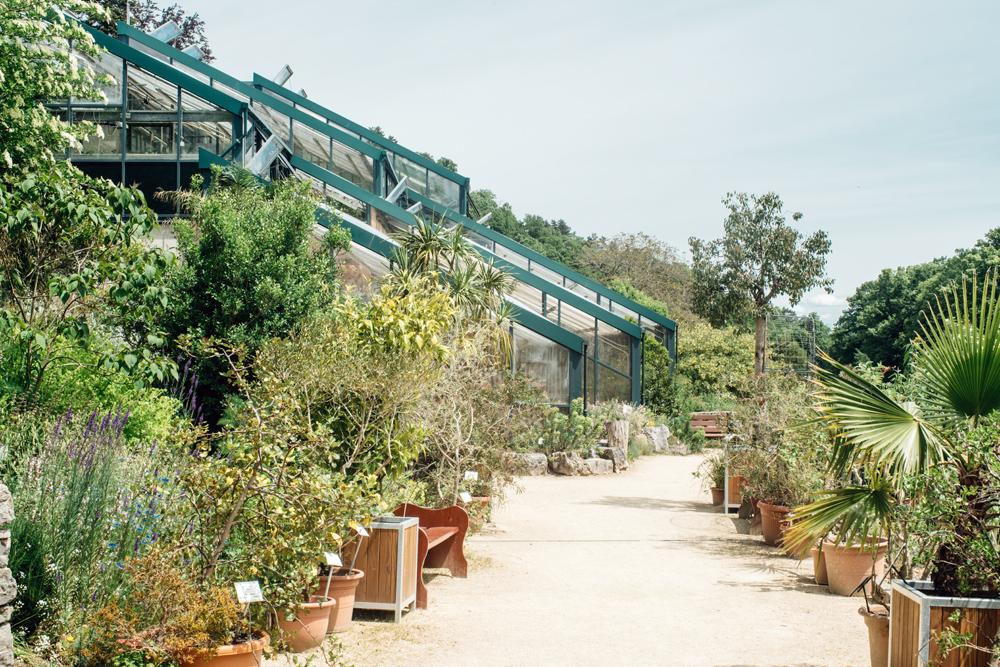 Neuchâtel – Jardin botanique – Les serres et le jardin méditerranéen