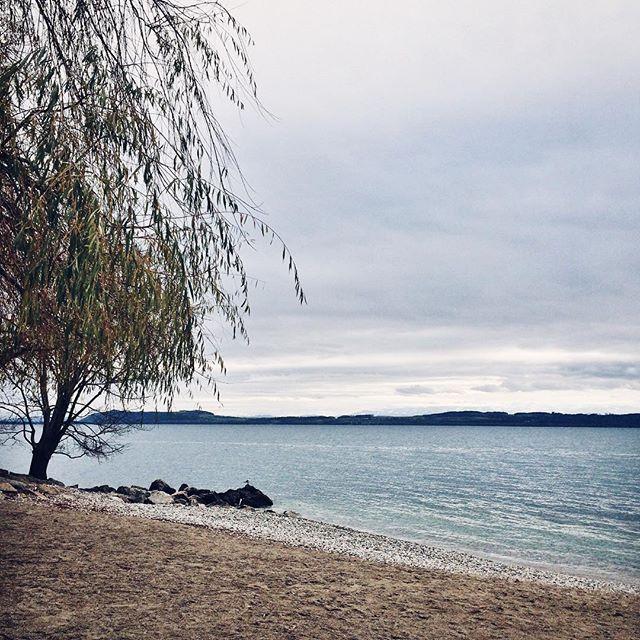 Le bord du lac de Neuchâtel en hiver
