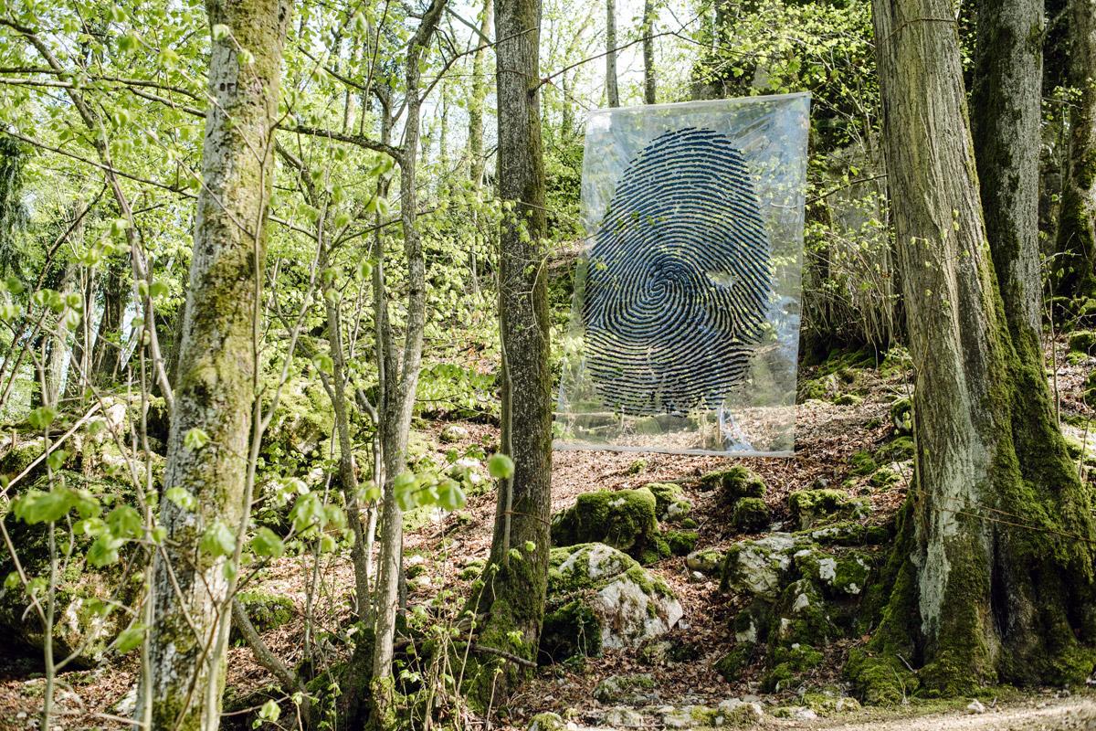 Jardin botanique de Neuchâtel, Land Art 2016 – Empreintes (Karlo Kosta)