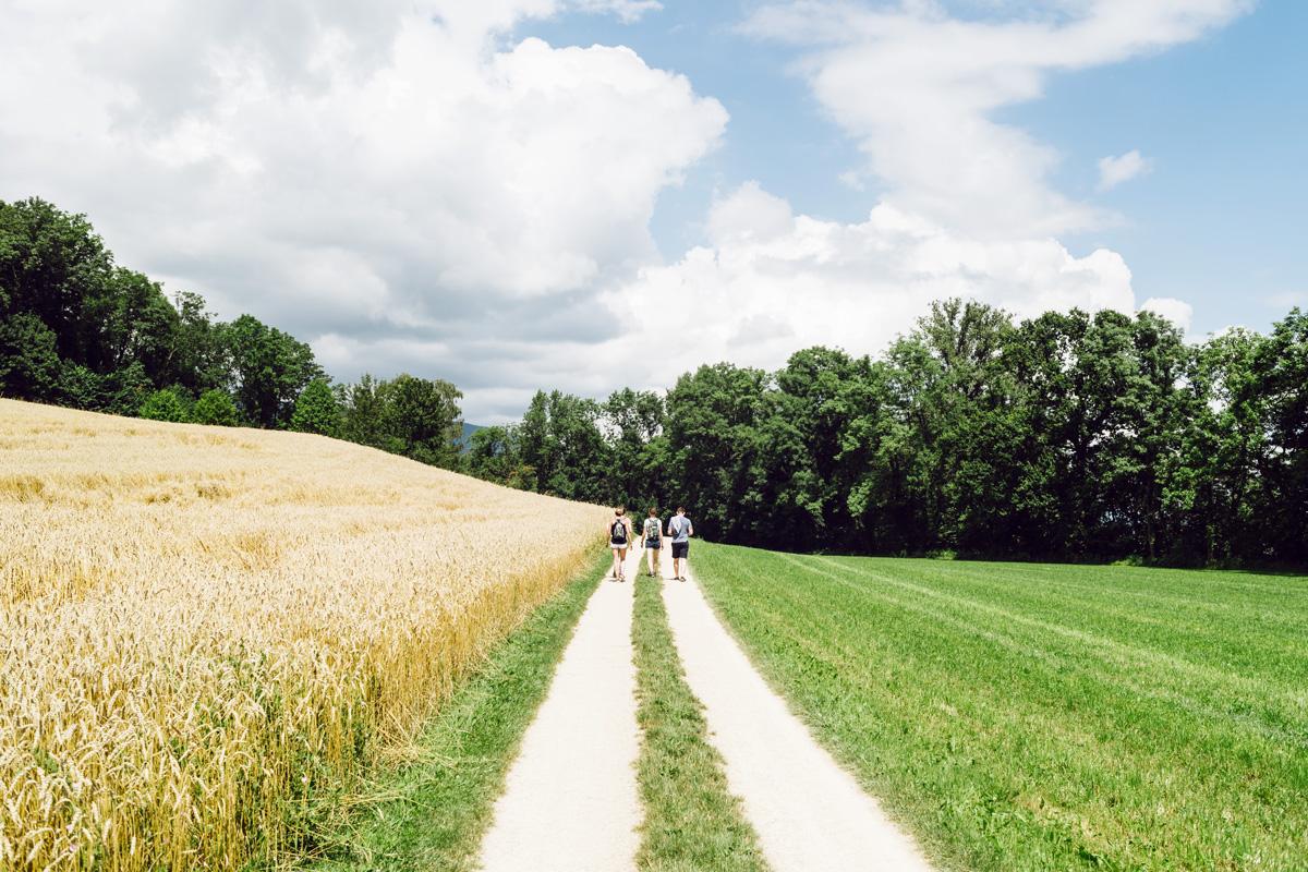 Promenade sur l'Île Saint-Pierre