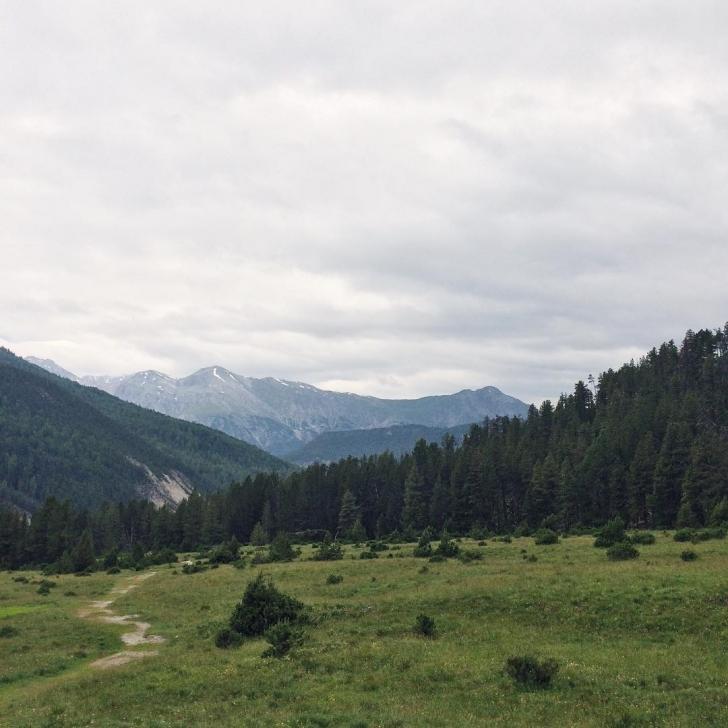 Randonnée dans le Parc National Suisse