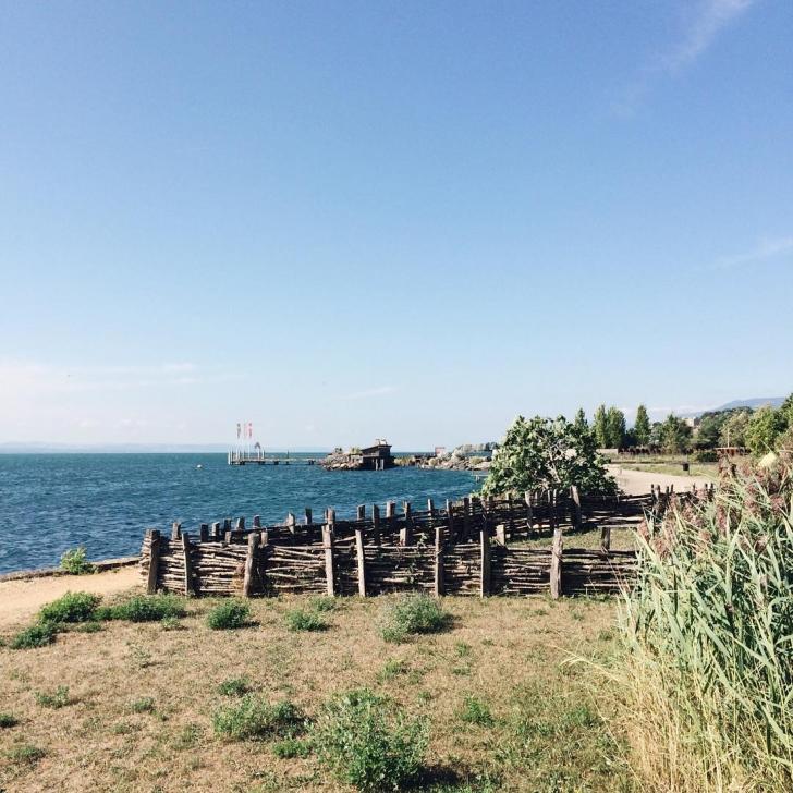 Bord du lac de Neuchâtel au Laténium