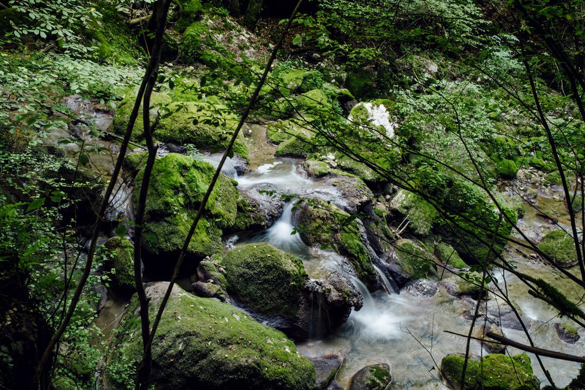 Gorges de Douanne –Twannbachschlucht