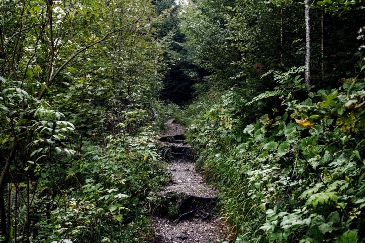 Le Creux du Van – Sentier des 14 contours