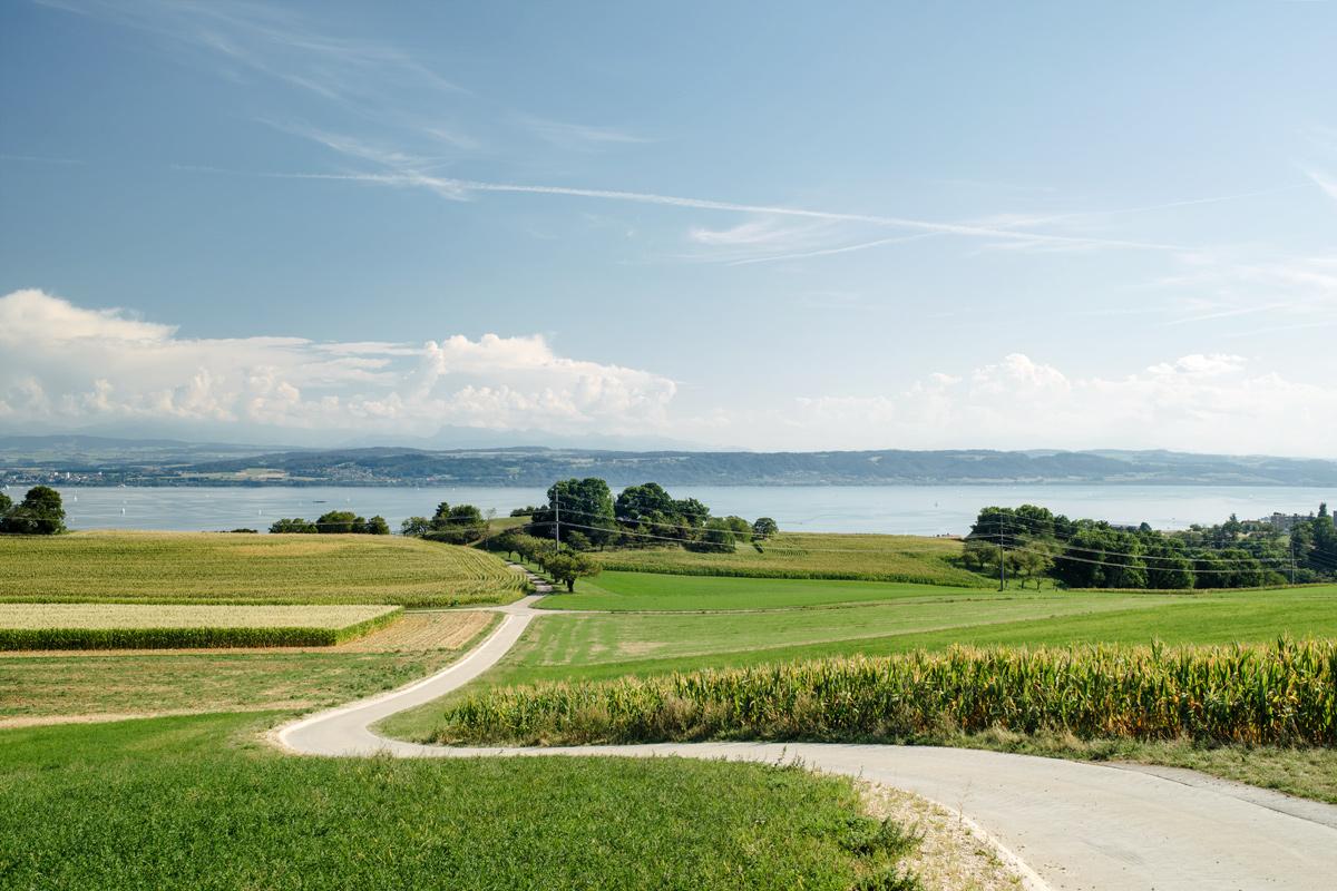 Vue sur le lac de Neuchâtel depuis les hauteurs de la Béroche