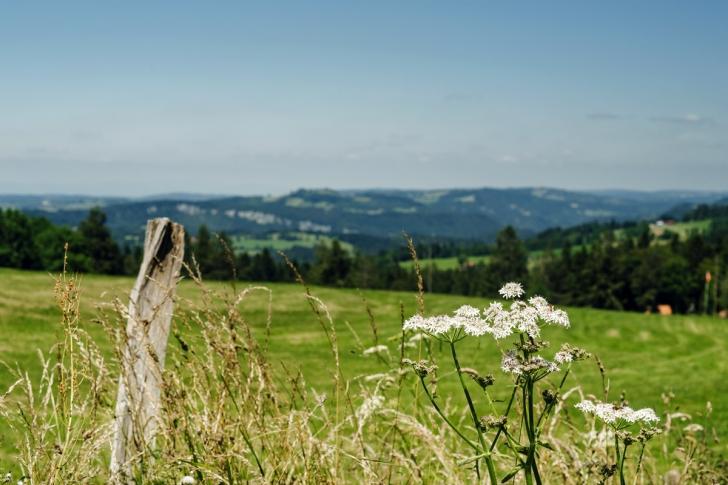 La Chaux-de-Fonds – Vue depuis le Chemin de la Sombaille
