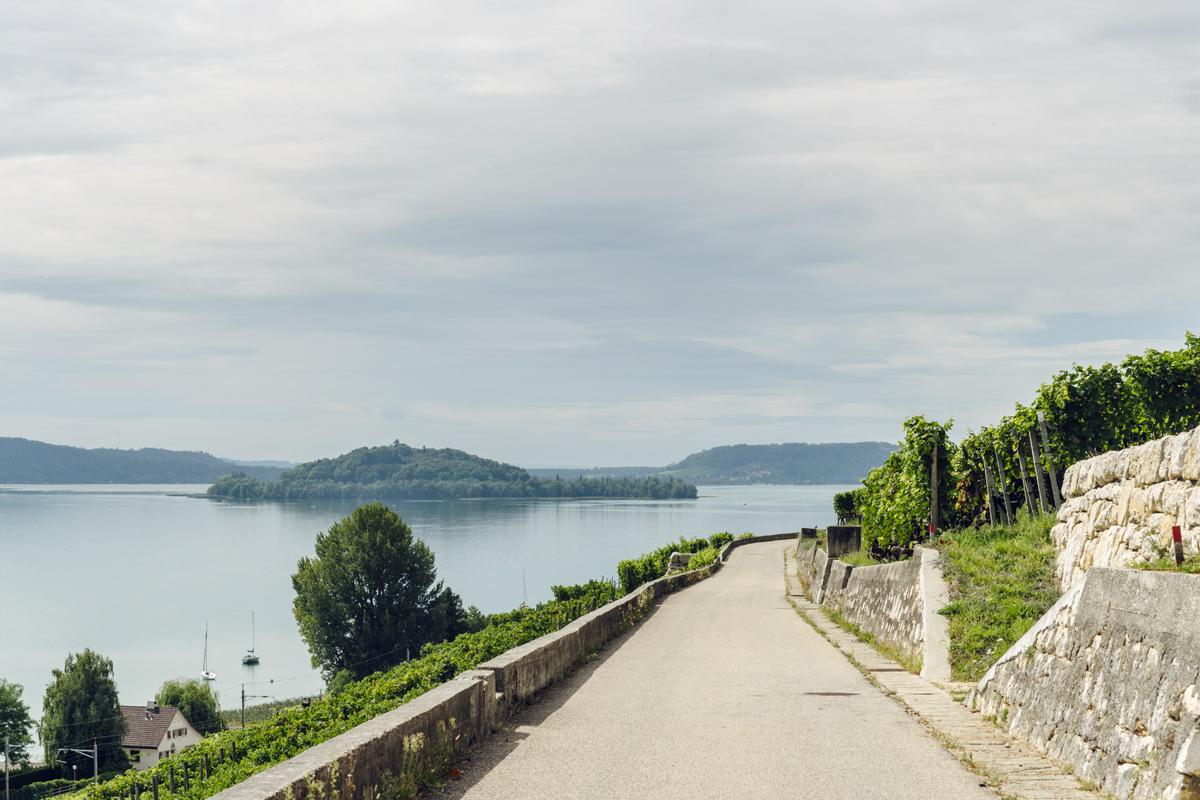Vue sur le lac de Bienne et l'Île St-Pierre depuis le Chemin des Vignes