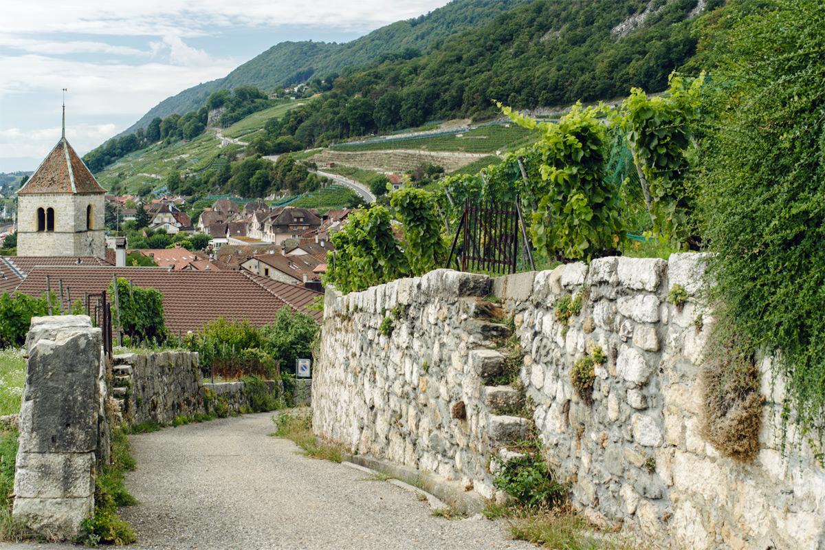 Balade dans le village viticole de Twann