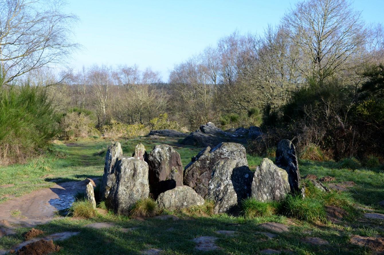 Errances en foêts bretones, Hotié de Vivianne – La Lune Mauve