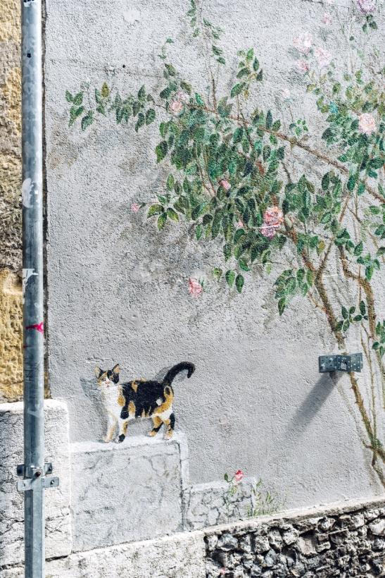 Neuchâtel – Les peintures d'Anne Monnier le long de la rue du Neubourg