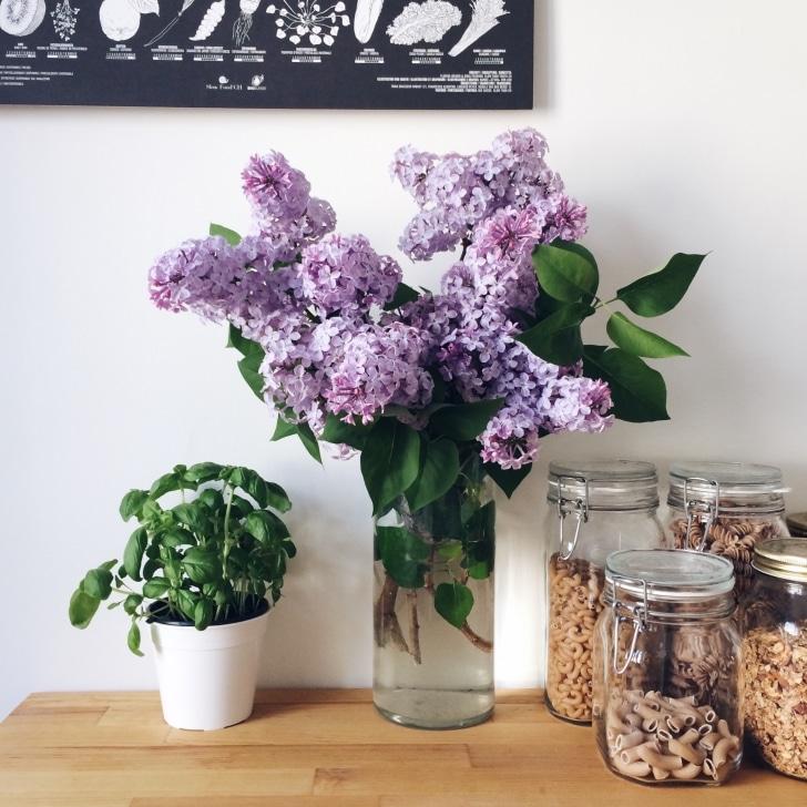 Bocaux de pâtes et bouquet de lilas