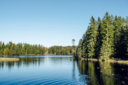 Balade autour de l'étang de la Gruère, dans le canton du Jura