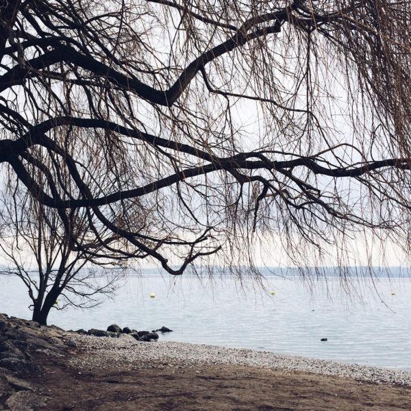 Balade au bord du lac de Neuchâtel