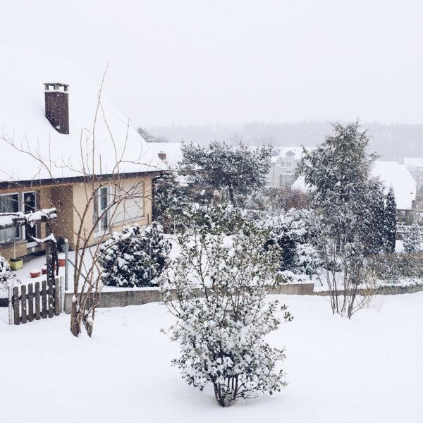 Bienne sous la neige