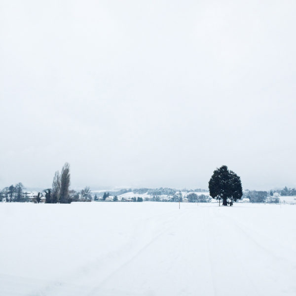 La campagne neuchâteloise sous la neige