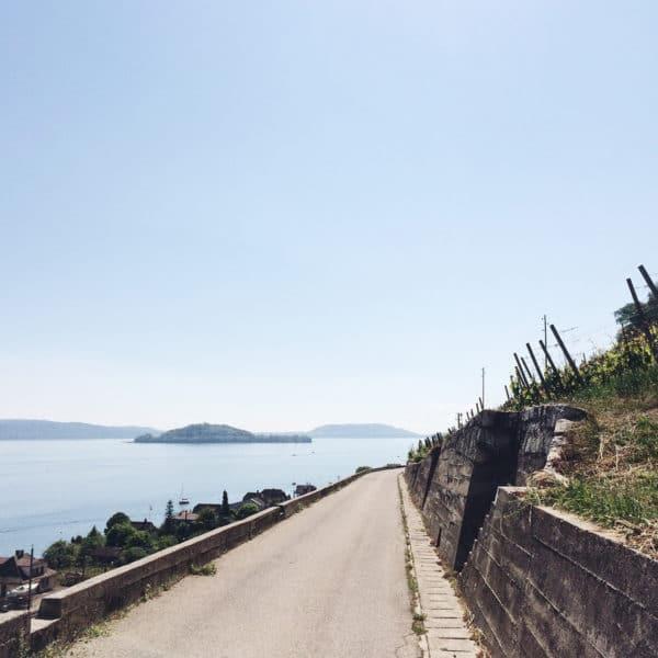 Balade le long du chemin des vignes, au bord du lac de Bienne