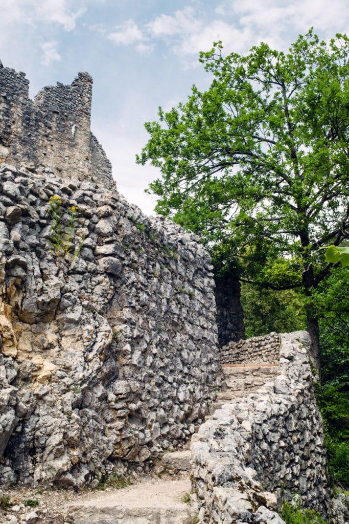 Les ruines du Château de Neu-Falkenstein