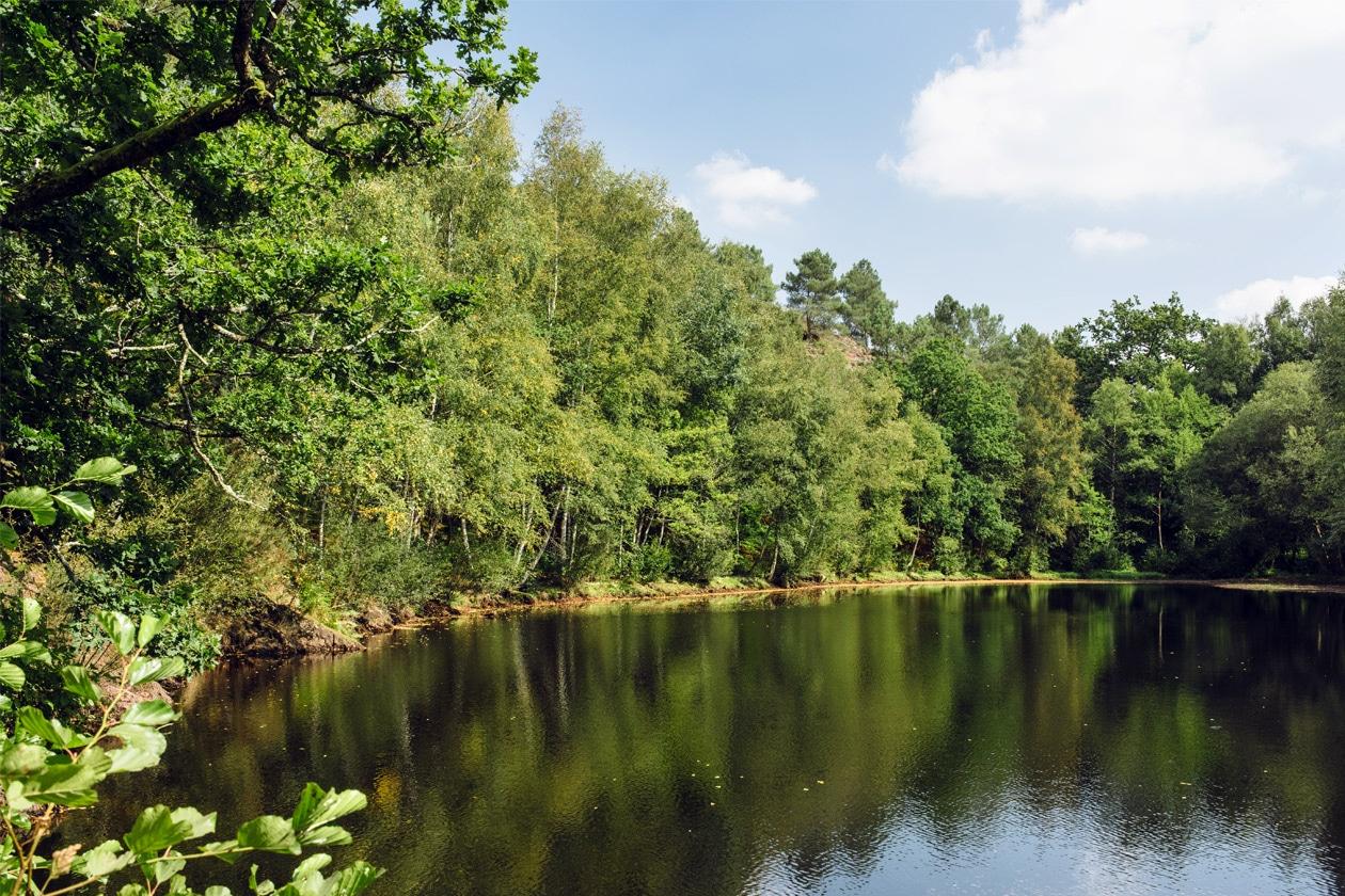 Bretagne, forêt de Paimpont: le miroir aux fées