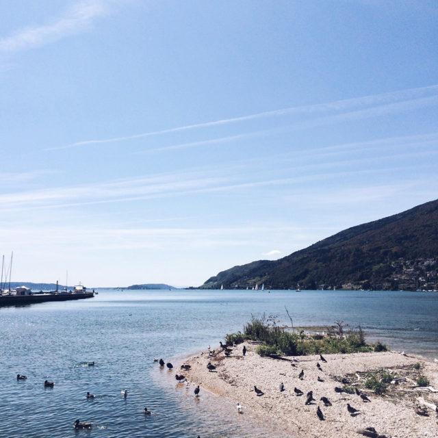Promenade au bord du lac de Bienne