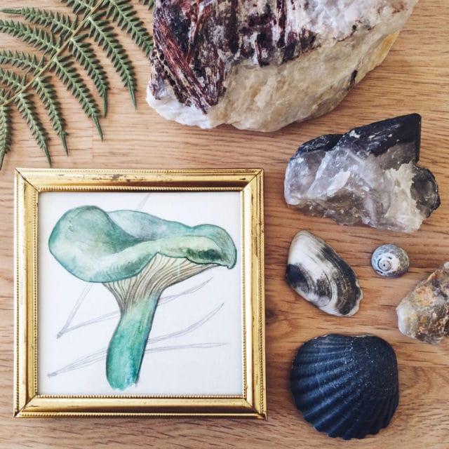 Petits trésors ramenés de Bretagne: cristaux de quartz breton, coquillages et cailloux ramassés sur la plage, fougère séchées, aquarelle d'un petit champignon dans un cadre chiné