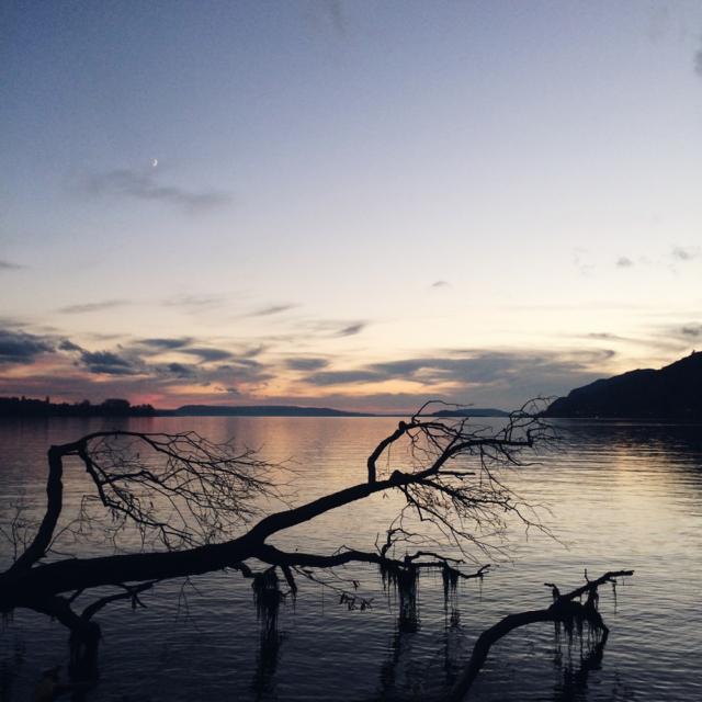 Promenade de fin de journée au bord du lac de Bienne
