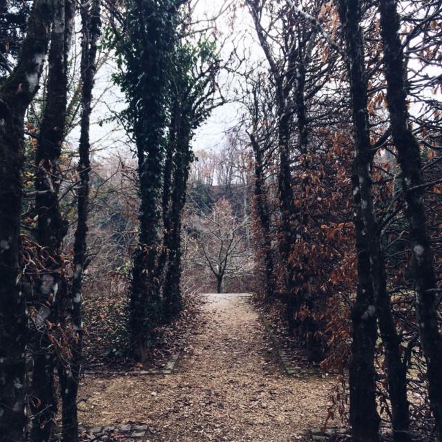 Promenade de début d'hiver au jardin botanique de Neuchâtel