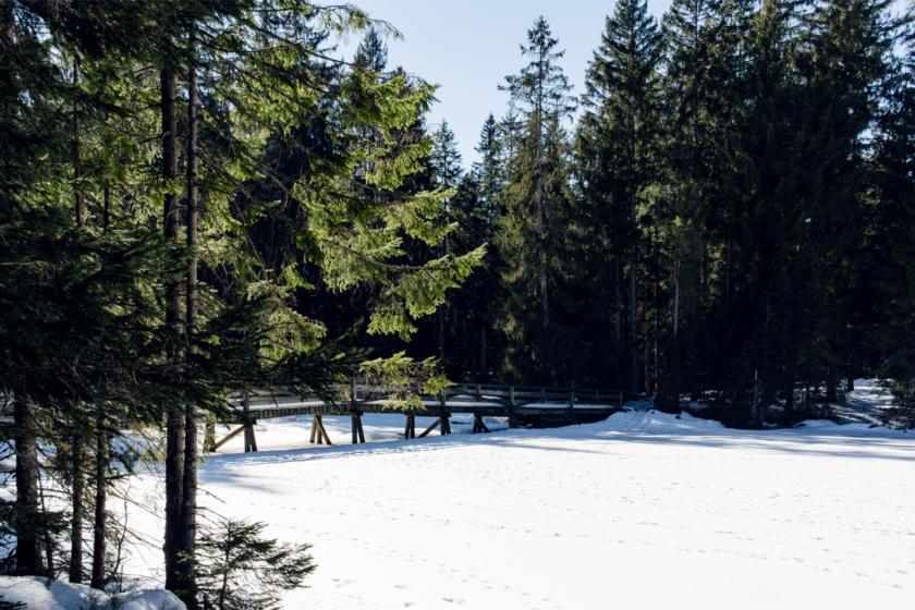 L'étang de la Guère, dans les Franches Montagnes, gelé et recouvert de neige