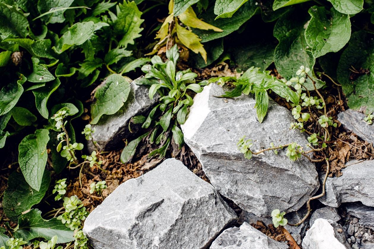 Lausanne Jardins 2019 – Terreau incognito – Placette des Terreaux