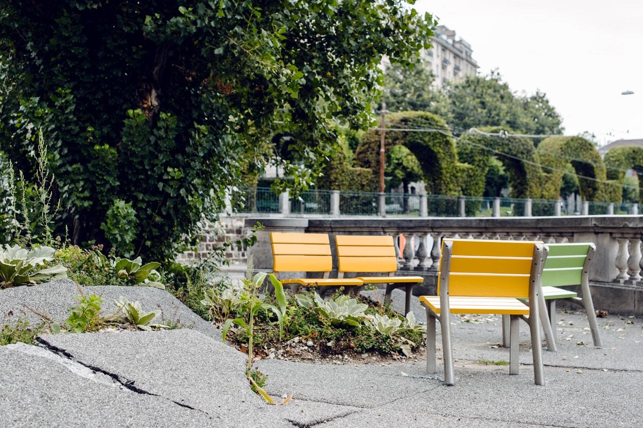 Lausanne Jardins 2019 – La Renaissance du peuplier –Placette du peuplier