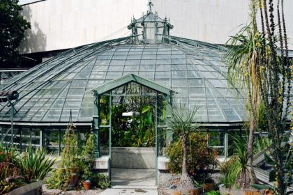 La serre Victoria du jardin botanique de Bâle